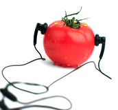 Tomate auf einem weißen Hintergrund Lizenzfreie Stockfotografie