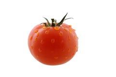 Tomate avec des gouttes de l'eau Image libre de droits