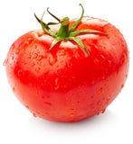 Tomate avec des gouttes de l'eau Images libres de droits