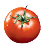 Tomate avec le waterdrop image stock