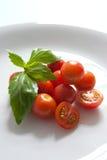 Tomate-Basilikum lizenzfreies stockbild