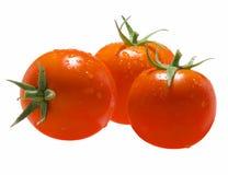 Tomate-c Imagem de Stock Royalty Free