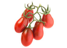 Tomate-cerise rouge Images stock