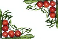 Tomate, chiles rojos y haba aislados con las verduras esenciales del fondo blanco para la comida mexicana imagenes de archivo