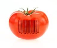 Tomate codée photographie stock libre de droits