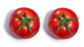 Tomate com e sem gotas de orvalho, vista superior, trajetos imagem de stock