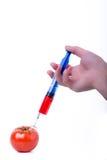 Tomate com seringa Imagem de Stock