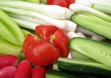 Tomate, concombres et oignons Photographie stock libre de droits