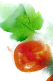 Tomate congelado Foto de Stock
