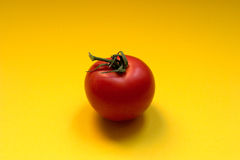 Tomate - copyspace Imagem de Stock Royalty Free