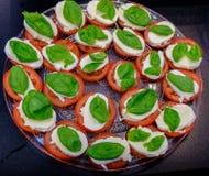 Tomate cortado del ‹del †del ‹del †con matsarela del queso con verdes en una placa Fotos de archivo libres de regalías