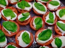 Tomate coupée en tranches de ‹d'†de ‹d'†avec le matsarela de fromage avec des verts d'un plat Photographie stock libre de droits