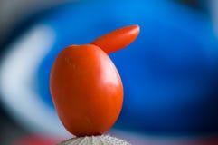 Tomate déformée, centrale d'OGM Photo libre de droits