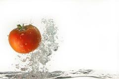 Tomate dans l'eau Photos stock