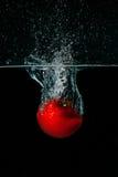 Tomate dans l'eau photographie stock libre de droits