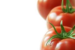 Tomate dans la fin vers le haut Image libre de droits