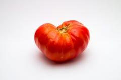 Tomate de Brandywine Imagens de Stock