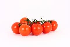 Tomate de cereja Imagens de Stock Royalty Free