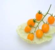 Tomate de cereja Imagens de Stock