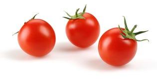 Tomate de cereja fresco Fotografia de Stock