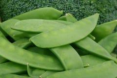 Tomate de cereja, friut das ervas e vegetais saudáveis imagem de stock