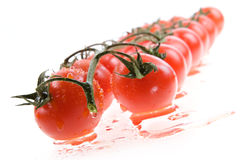 Tomate de cereja isolado Imagens de Stock Royalty Free