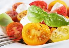 Tomate de cereja, manjericão fresca e queijo Fotos de Stock