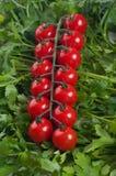 Tomate de cereza con el parsel verde Imagen de archivo