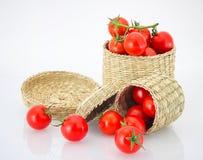 Tomate de cereza en caja y rollo traviesos Foto de archivo libre de regalías