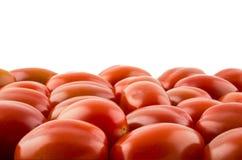 Tomate de cereza en el fondo blanco Imagenes de archivo