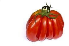 Tomate de coeur Photo stock