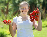 Tomate de cueillette de femme dans le domaine Photographie stock libre de droits