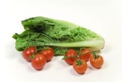tomate de laitue romaine et de vigne Photo libre de droits