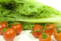 tomate de laitue romaine et de vigne Photo stock