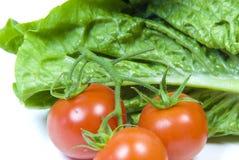 Tomate de laitue romaine et de vigne Photographie stock libre de droits