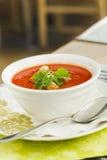 tomate de potage Image stock