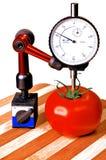 Tomate de précision Photo stock