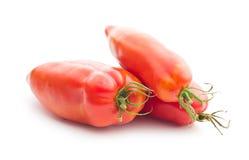 Tomate de San Marzano Fotografia de Stock Royalty Free