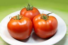 tomate del jardín Imagen de archivo