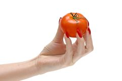 Tomate in der Hand Lizenzfreies Stockbild