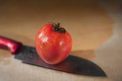 Tomate in der Küche Lizenzfreies Stockbild