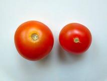 Tomate deux de plat Photo stock