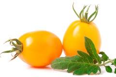 Tomate deux jaune avec la feuille d'isolement sur le fond blanc photos libres de droits