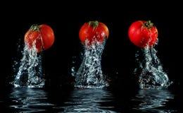 Tomate, die aus Wasser heraus spritzt Stockfoto