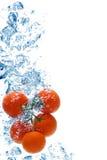 Tomate, die im Wasser spritzt Lizenzfreies Stockfoto