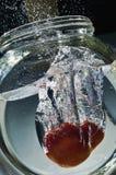 Tomate, die in Wasser spritzt Stockfoto