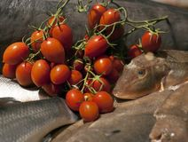 Tomate dos peixes e de cereja no mercado   Foto de Stock