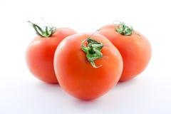 Tomate drei auf Weiß Lizenzfreie Stockbilder