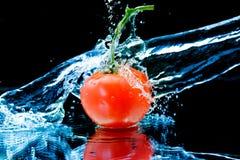 Tomate e água do respingo Imagens de Stock