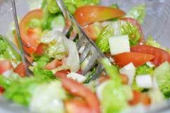 Tomate e alface Imagem de Stock